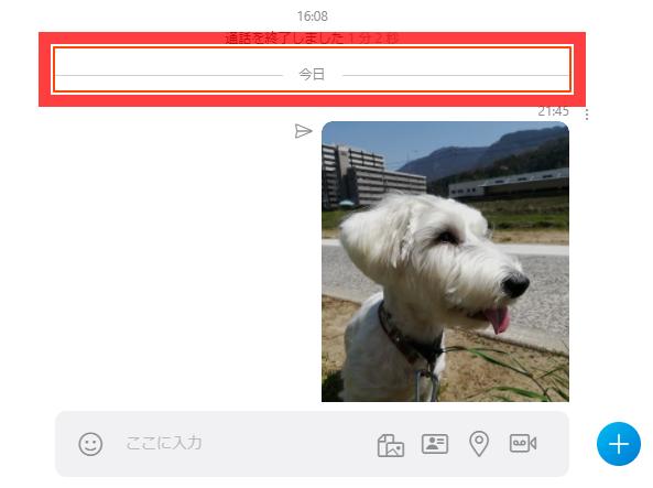 Skypeチャット画面 今日のところがフォーカスハイライトの赤い枠で囲まれている
